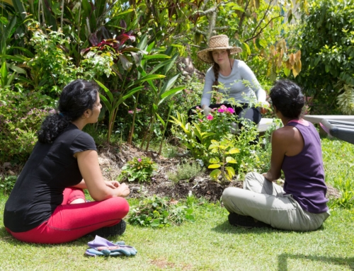 Hawaii Permaculture Workshop at Polestar Gardens