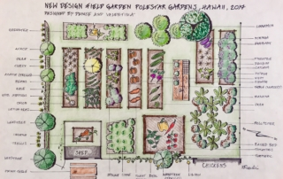 Hawaii Permaculture