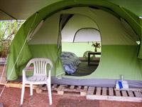 Polestar Gardens Tent Prices