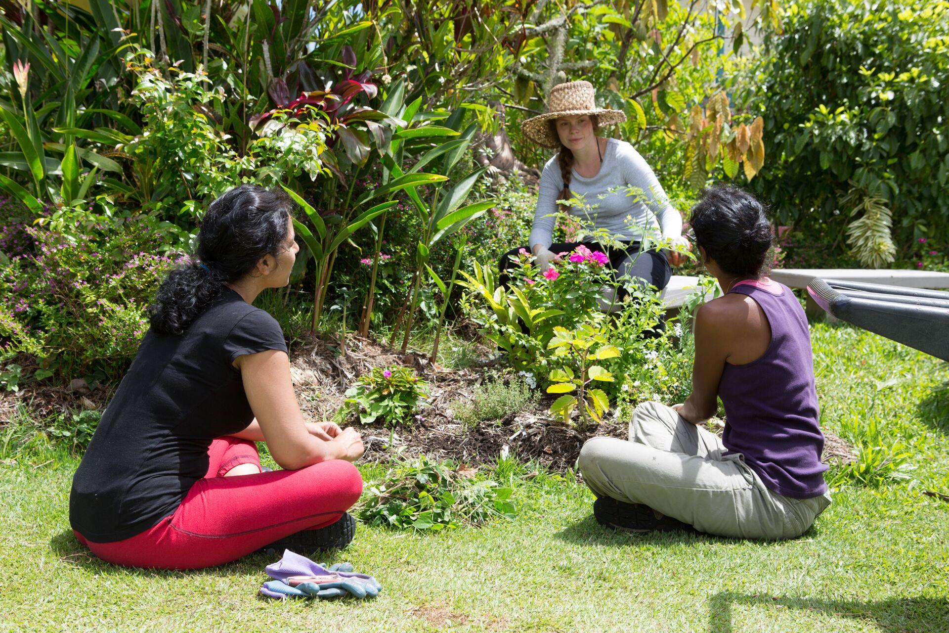 Residency at Polestar Gardens