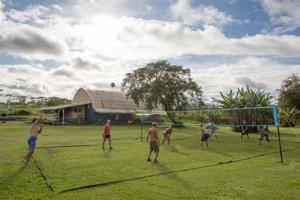 Polestar Gardens Volleybal
